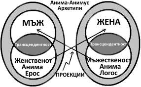 Анима и Анимус Юнг, проекции