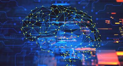 Развитието на хъбовете на мозъчната мрежа
