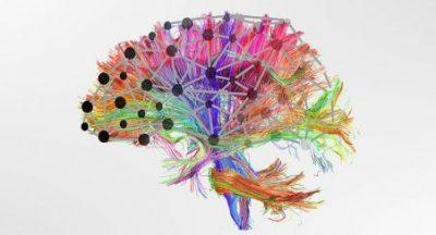 Изследване на мозъка при нарушения в развитието